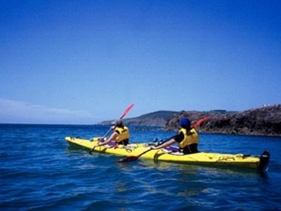 Sea Kayak tour Otago